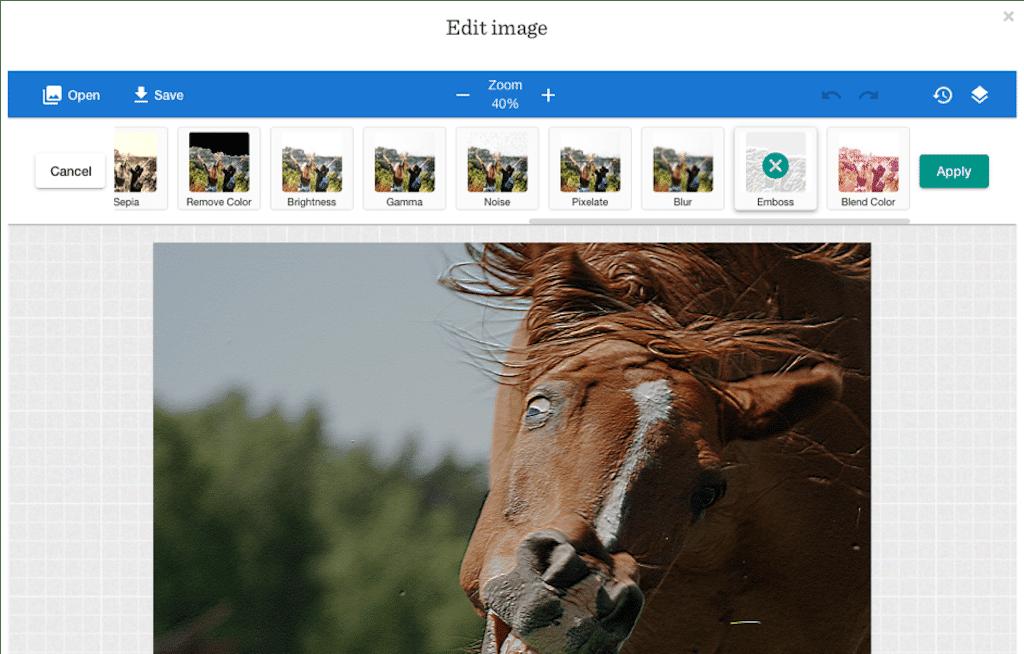 horse-editing