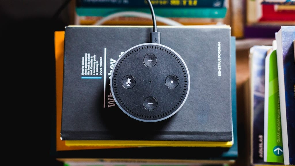 Alexa, voice search