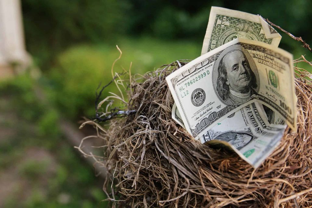money in the bird's nest