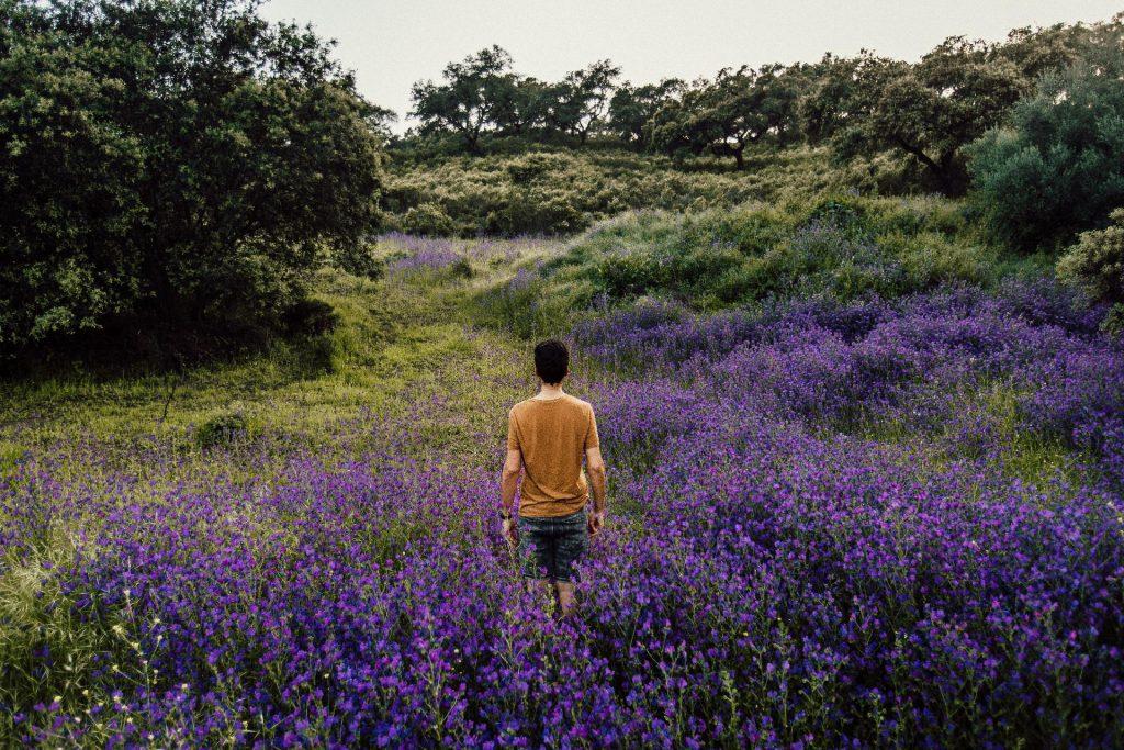 Person standing in a Lavendel Field