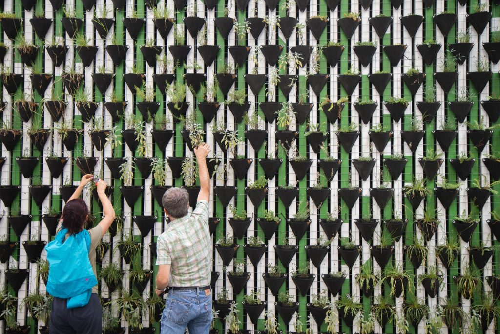 a man and a woman decorating and designing a tall wall with green plants
